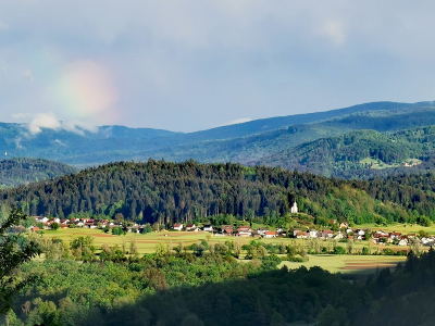 Vesna Taušanović, Ljubljana